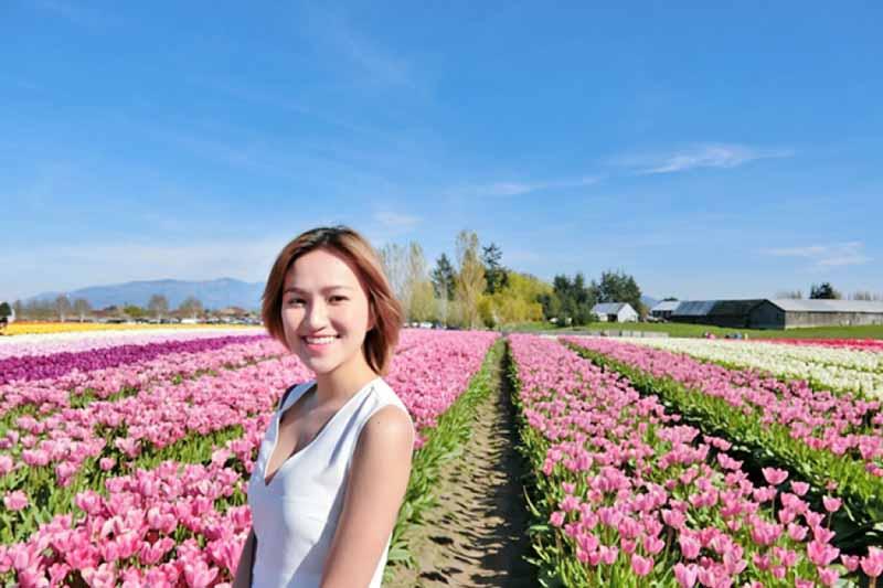 Cô gái hà lan giữa cánh đồng hoa Tulip