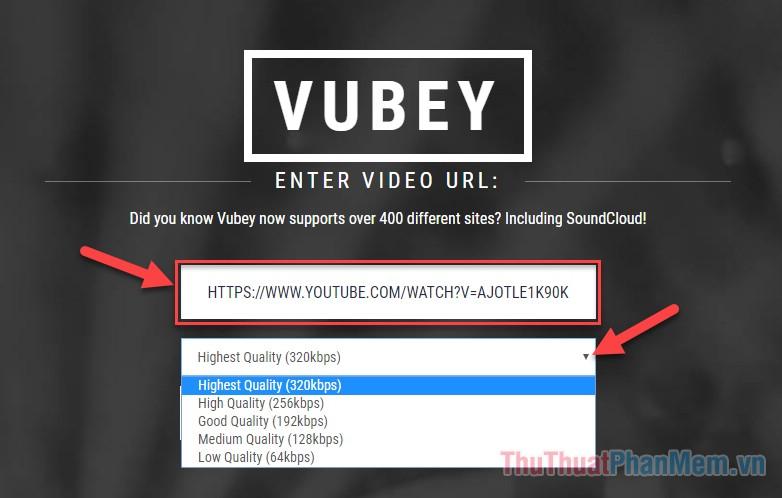 """Dán đường link video Youtube muốn chuyến sang mp3 vào ô """"VIDEO URL"""""""