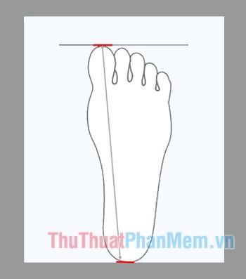Dùng thước để đo khoảng cách từ điểm dài nhất của ngón chân và gót chân