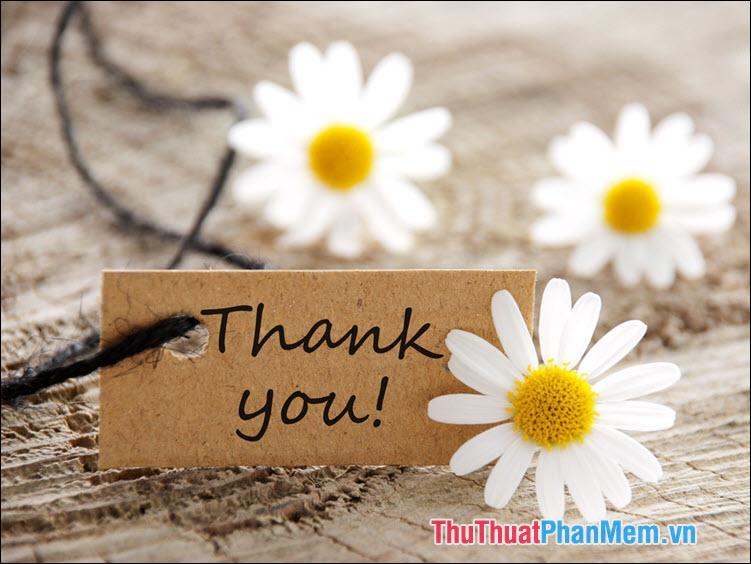 """Cách dùng của 2 từ """"cảm ơn"""" và """"cám ơn"""""""