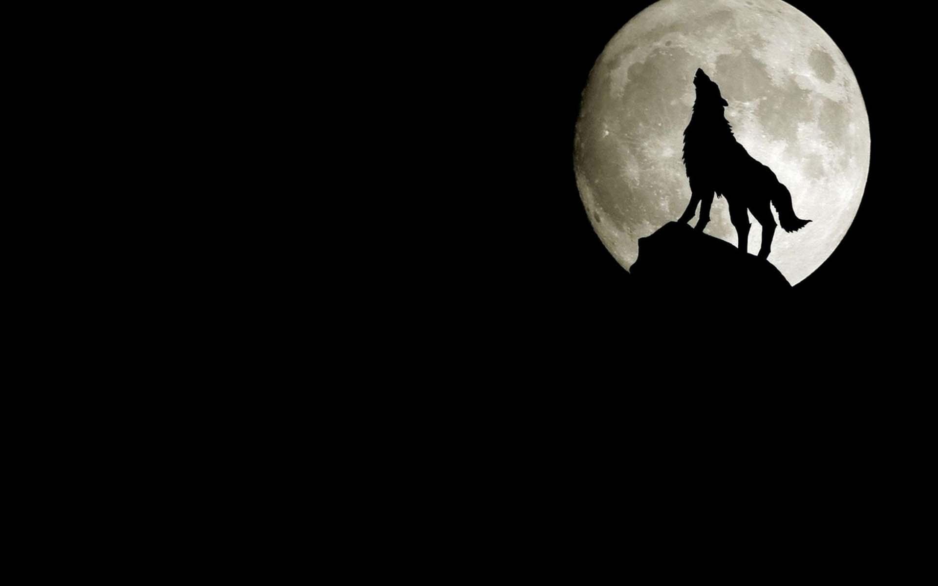 Hình nền đen chủ đề đêm tối