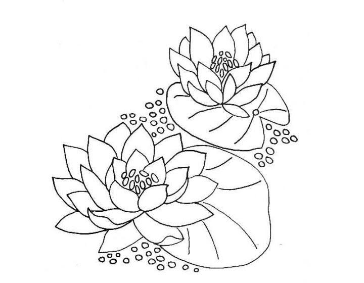 Hình tô màu hoa sen cho bé 5 tuổi