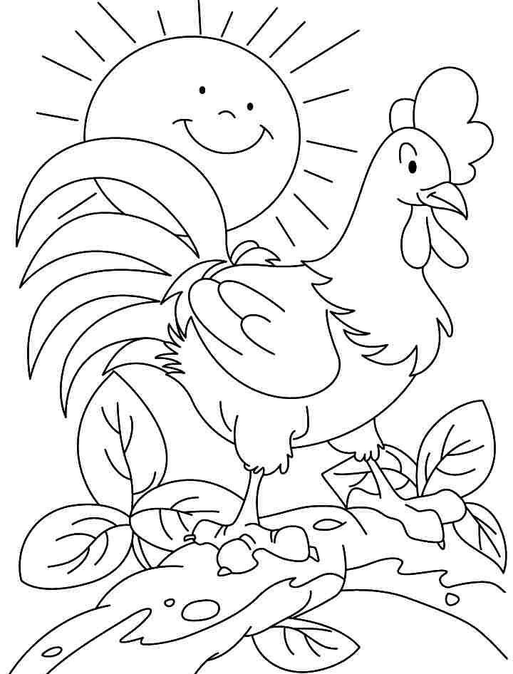 Tranh tô màu con gà trống cho bé 5 tuổi đẹp