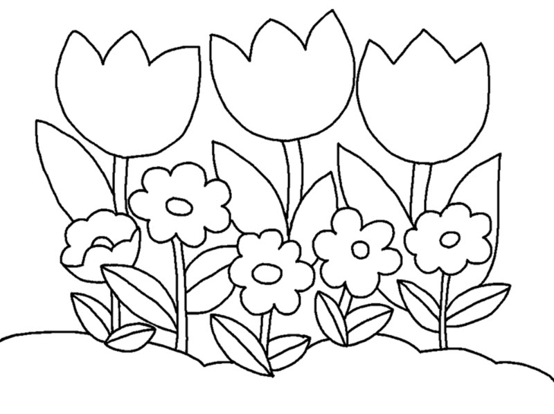 Tranh tô màu hoa cho bé gái 3 tuổi