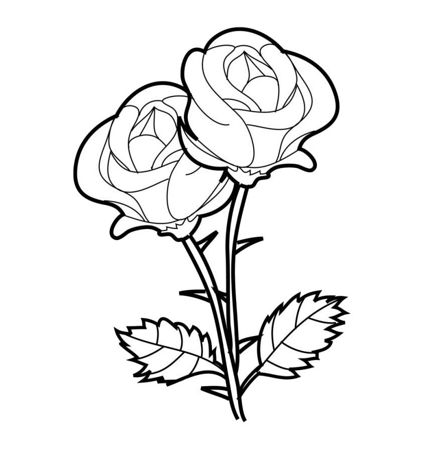Tranh tô màu hoa hồng đẹp cho bé gái
