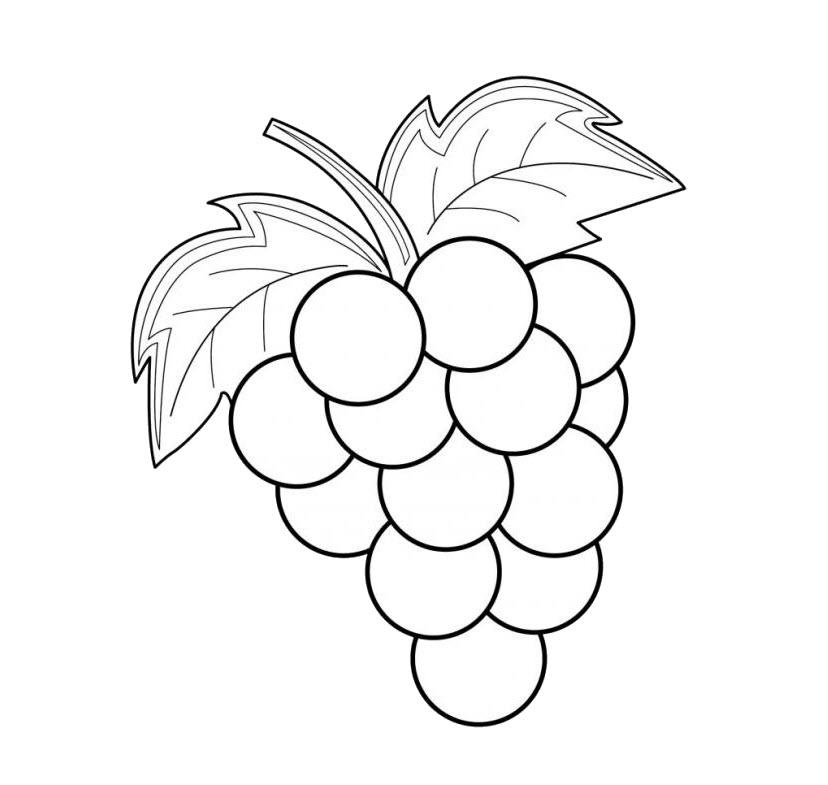 Tranh trái cây cho bé tô màu