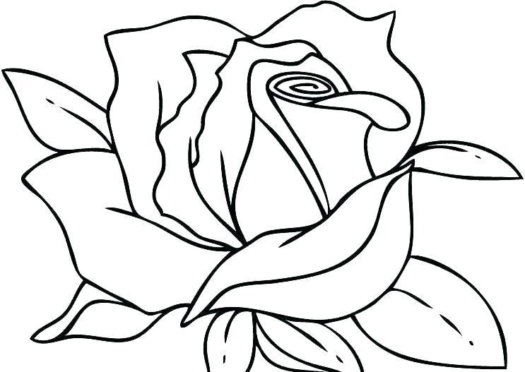 Bông hoa hồng đẹp cho bé tập tô