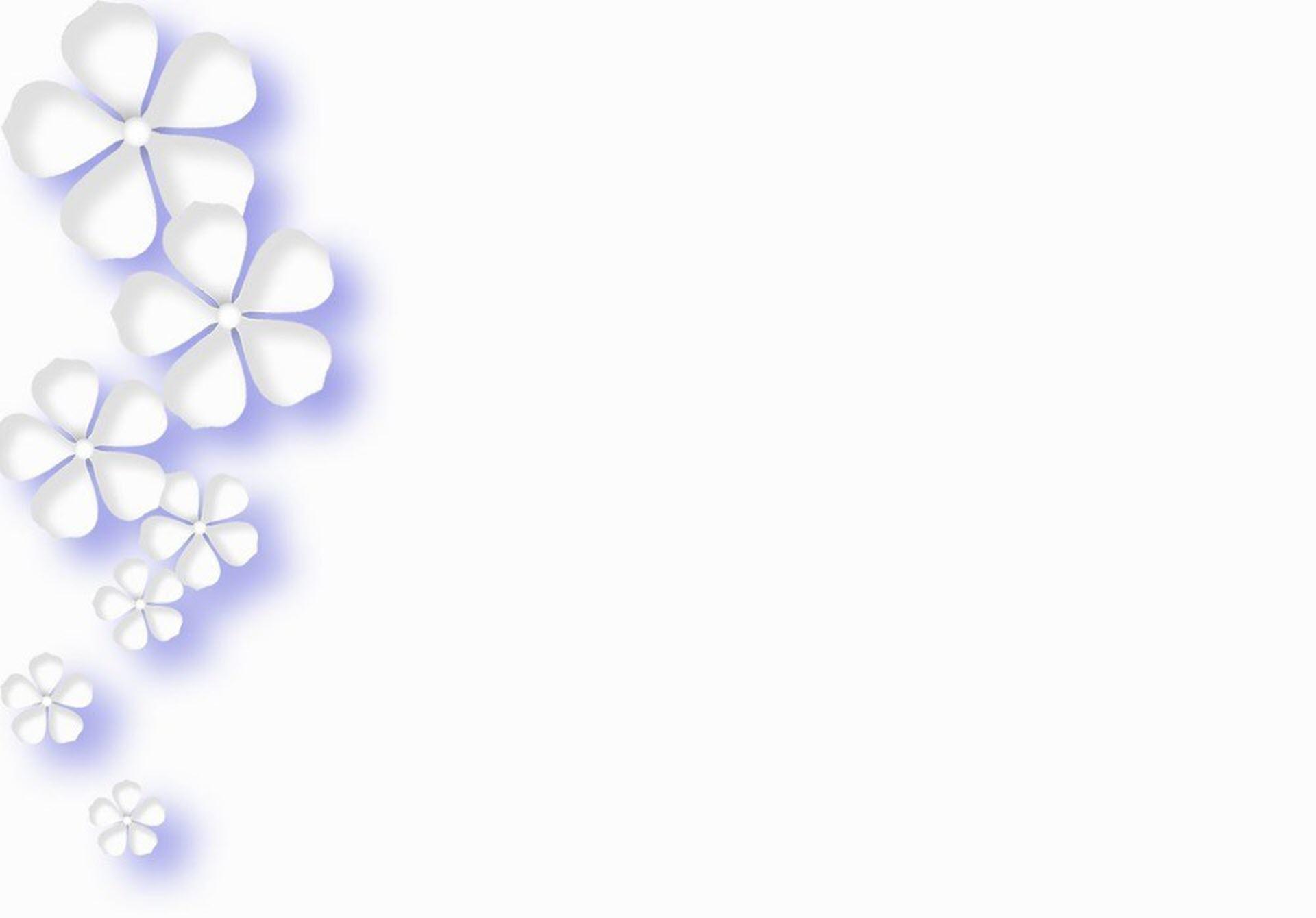 Hình nền trắng cực đẹp cho pc