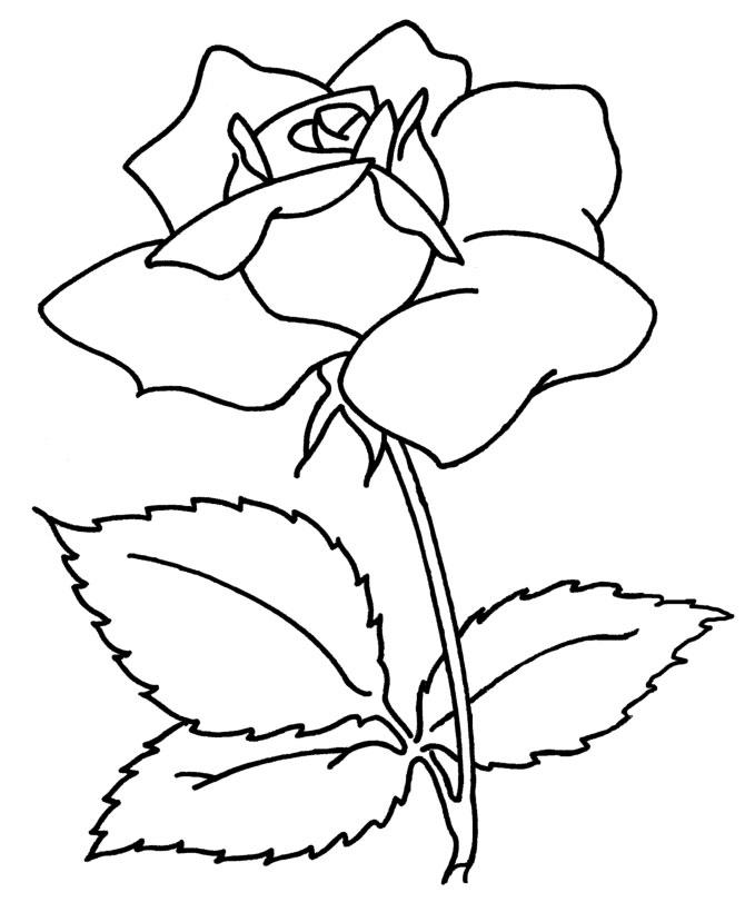 Hình tô màu bông hoa cho bé