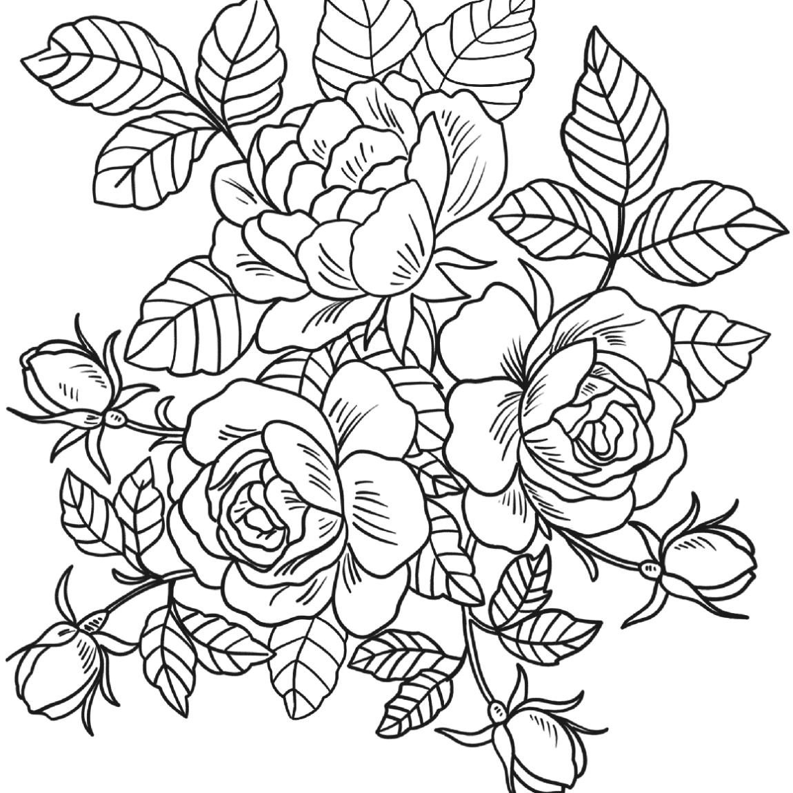 Hình tô màu hoa hồng