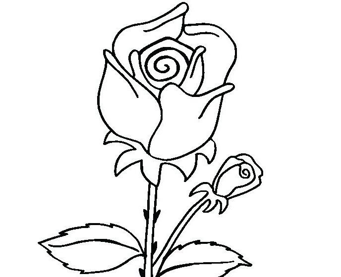 Tô màu bông hoa cho bé