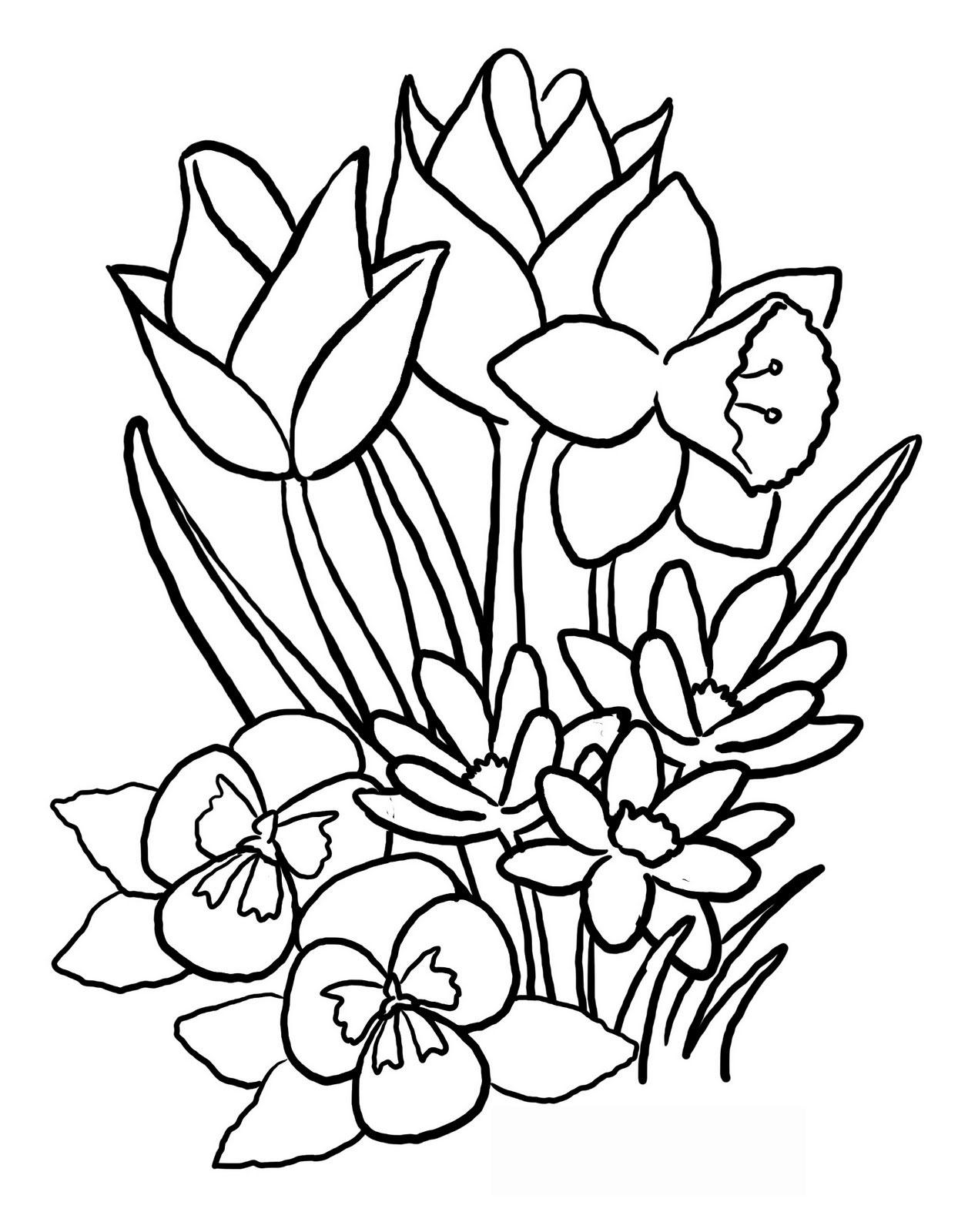 Tô màu các loại hoa đẹp