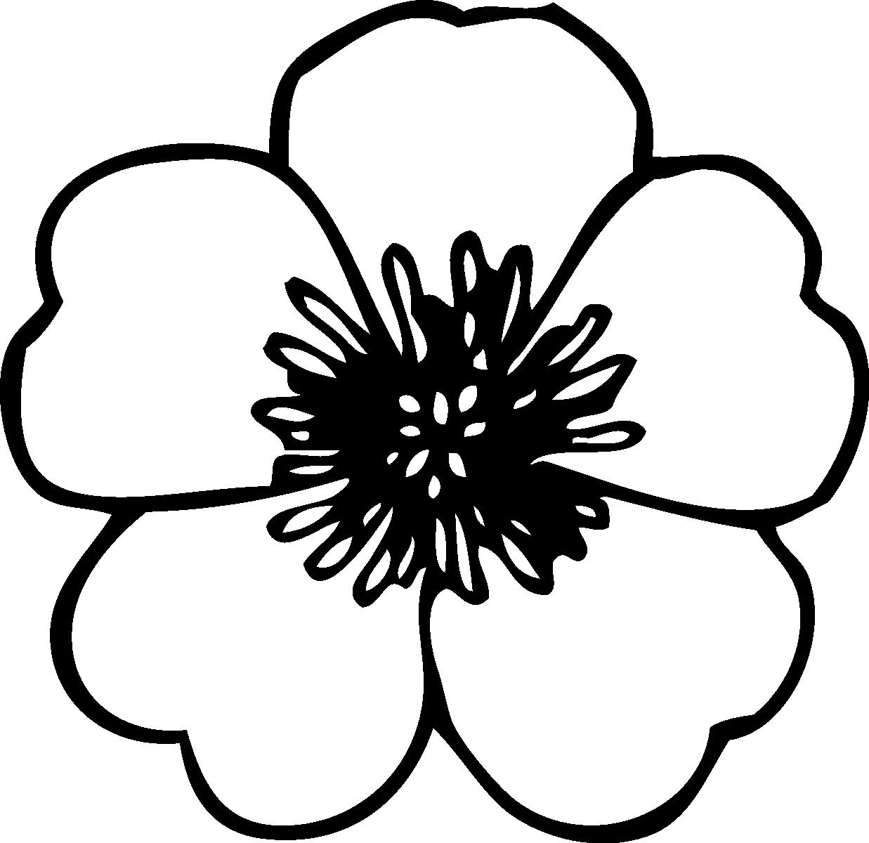 Tranh tô màu bông hoa đẹp