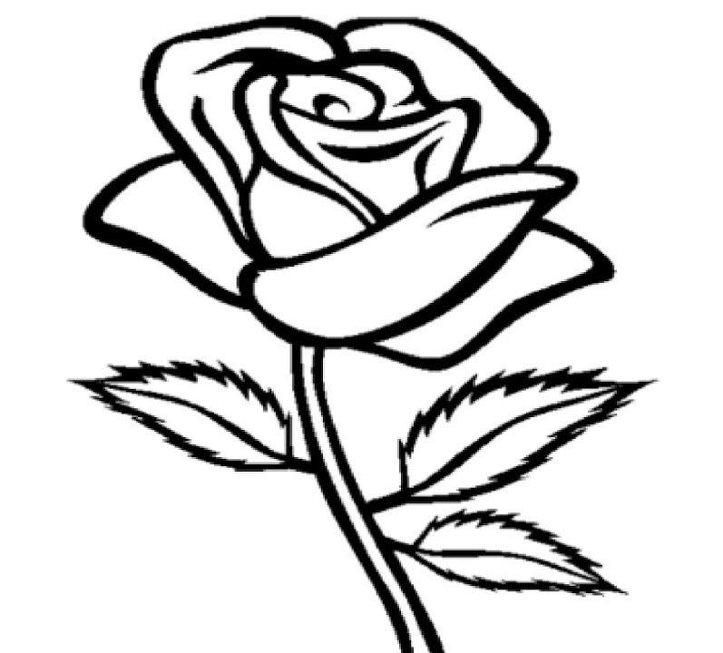 Tranh tô màu bông hoa hồng cho bé