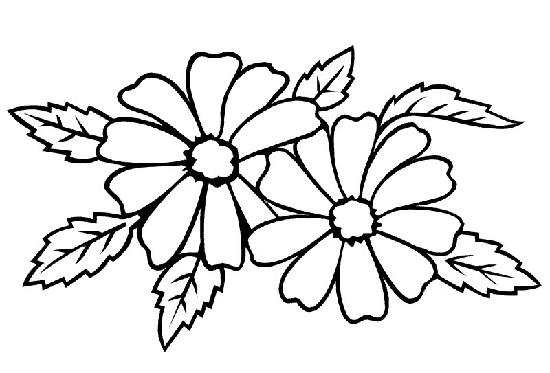 Tranh tô màu các bông hoa