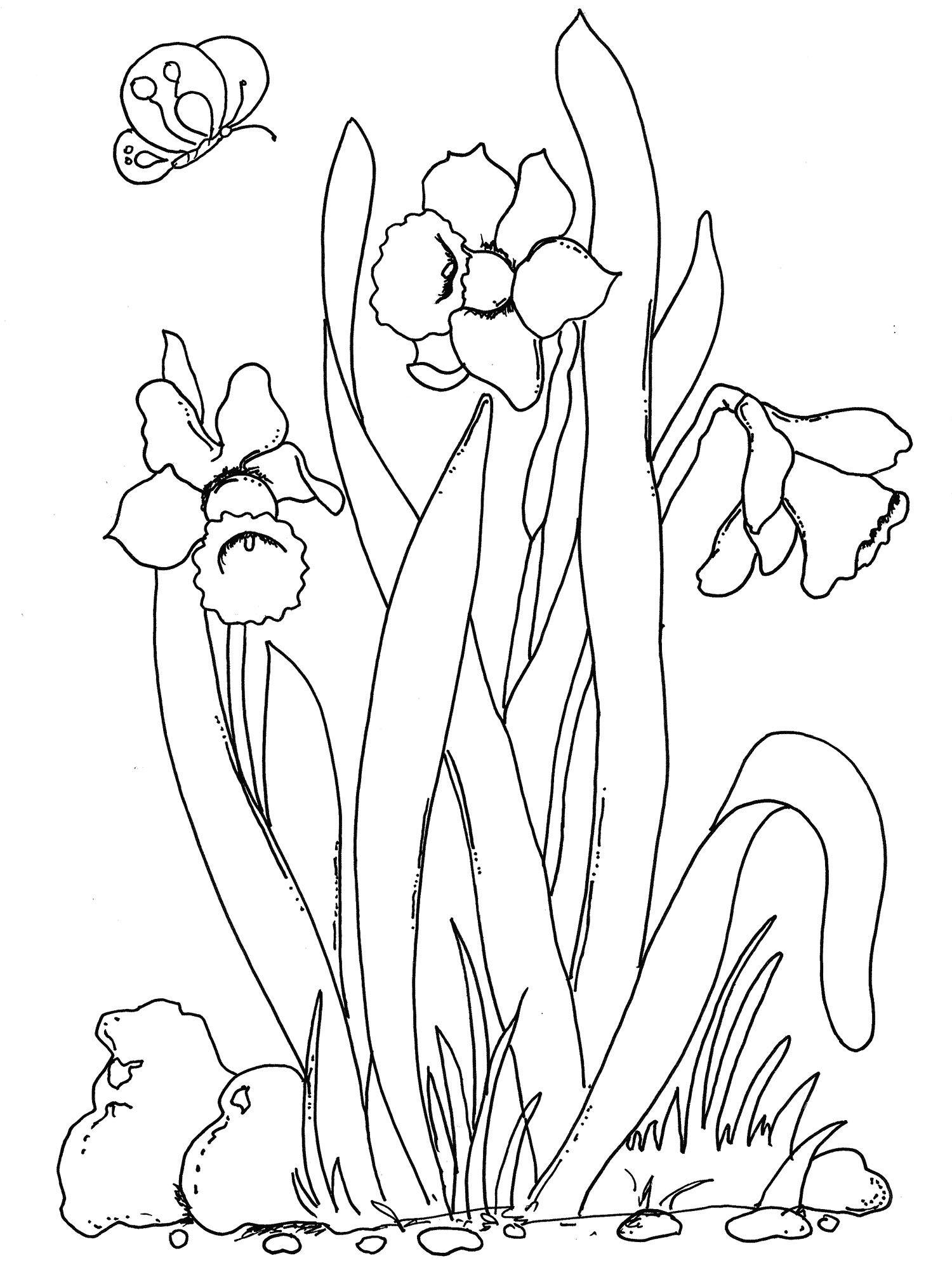 Tranh tô màu các cây hoa