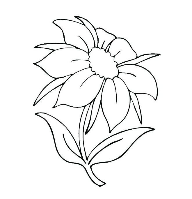 Tranh tô màu chủ đề bông hoa (2)