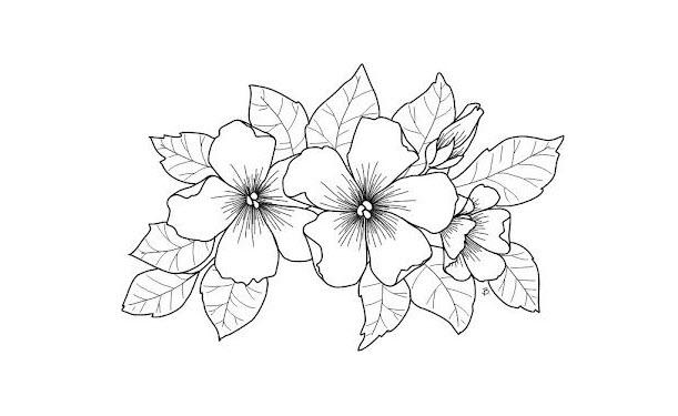 Tranh tô màu chủ đề bông hoa