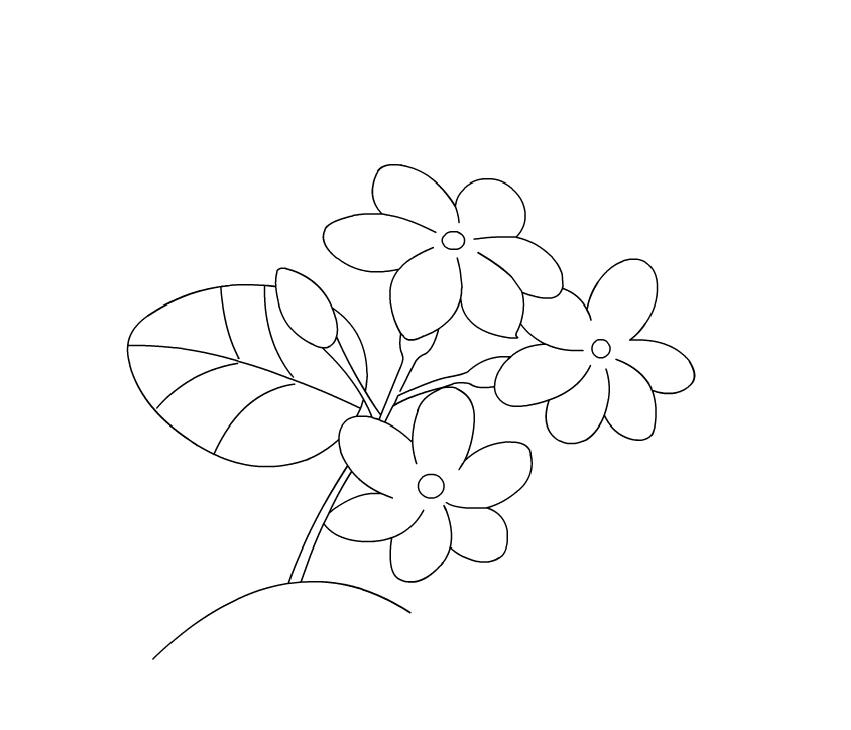 Tranh tô màu chủ đề hoa