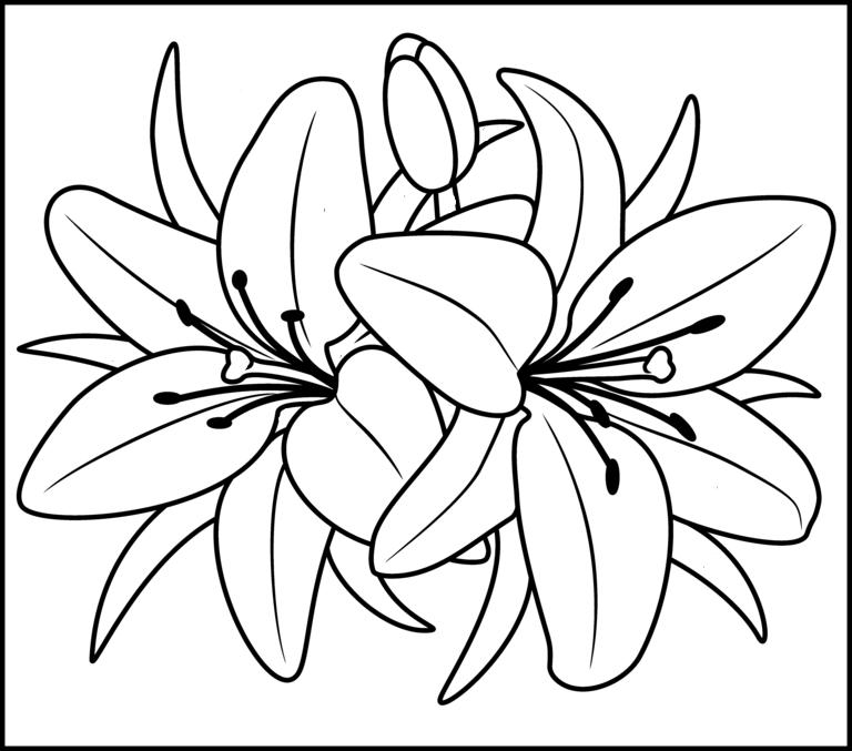Tranh tô màu hoa cho bé