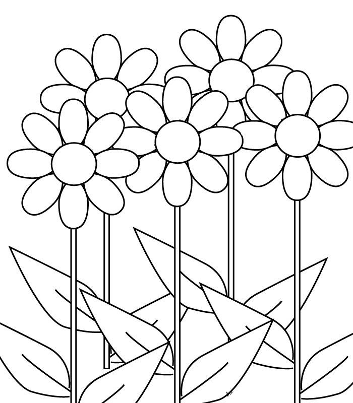 Tranh tô màu hoa đơn giản