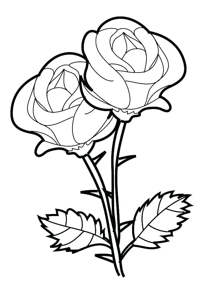Tranh tô màu hoa hồng cho bé tập tô