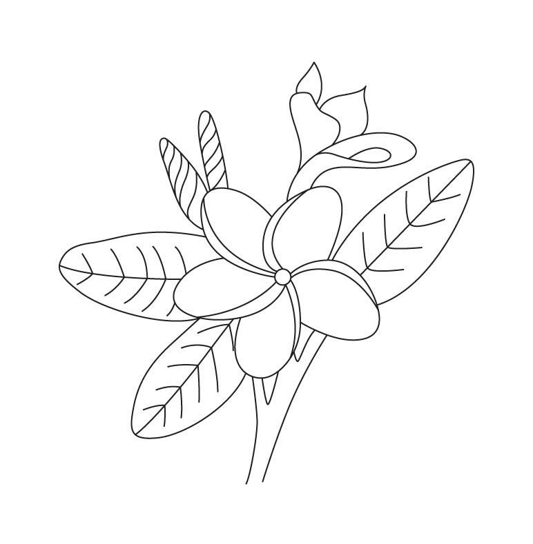 Tranh tô màu hoa sứ đẹp