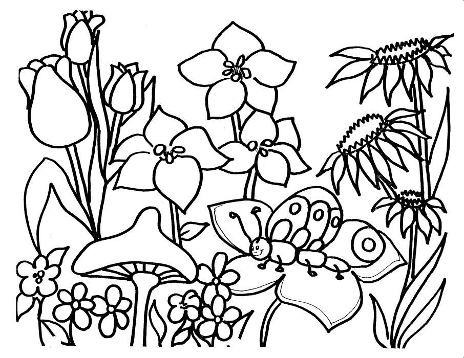 Tranh tô màu vườn hoa đẹp