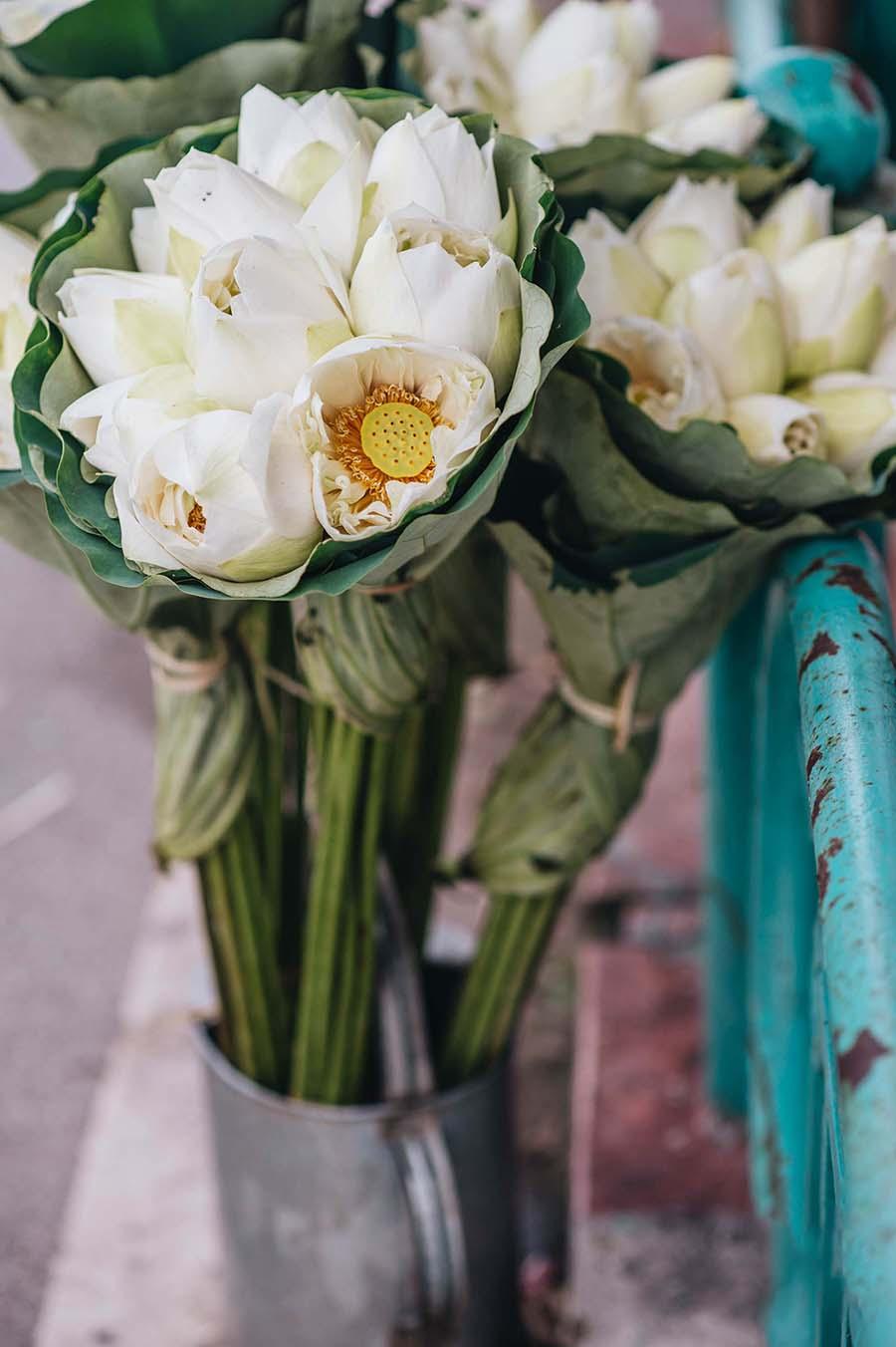 Hình ảnh bó hoa sen trắng đẹp