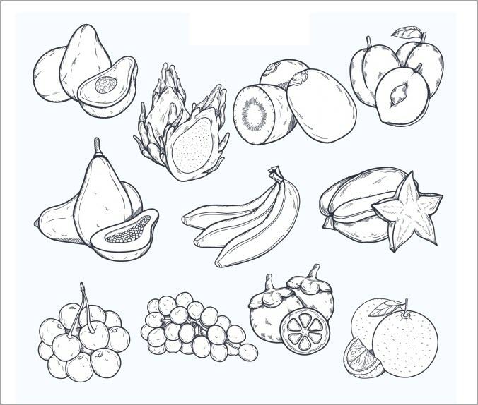 Bé tập tô màu tranh hoa quả