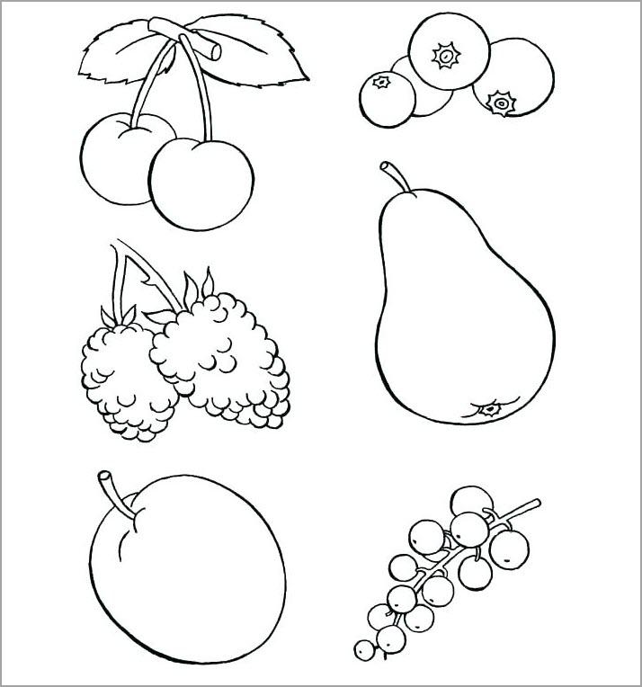 Hình cho bé tập tô màu các loại quả