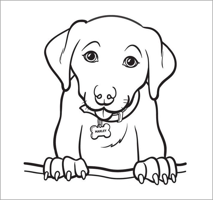 Hình tập tô chủ đề con chó