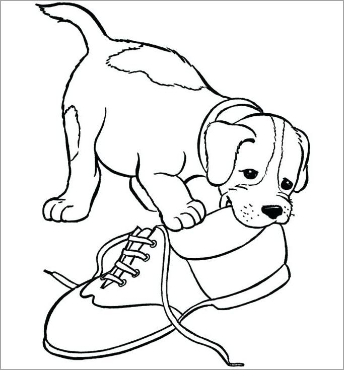 Hình tập tô màu con chó cho bé