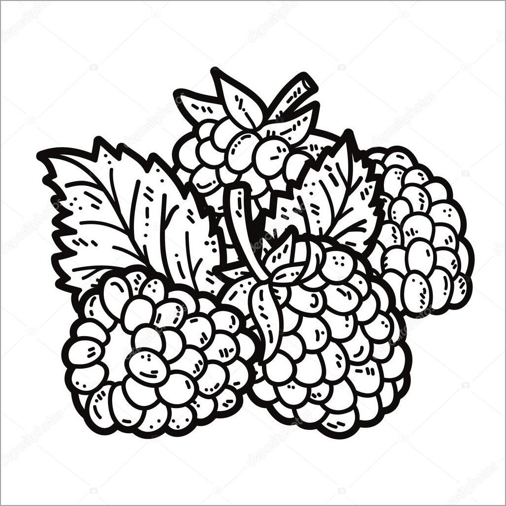 Hình tô màu hoa quả đẹp