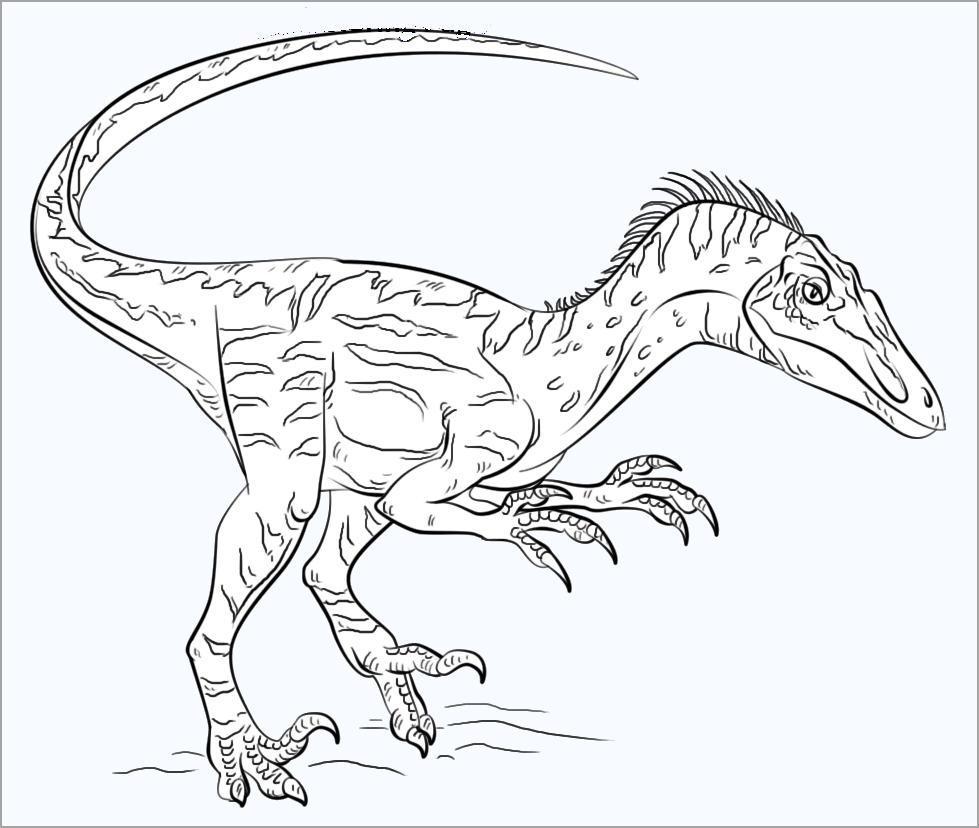 Tranh khủng long đẹp nhất cho bé tô màu