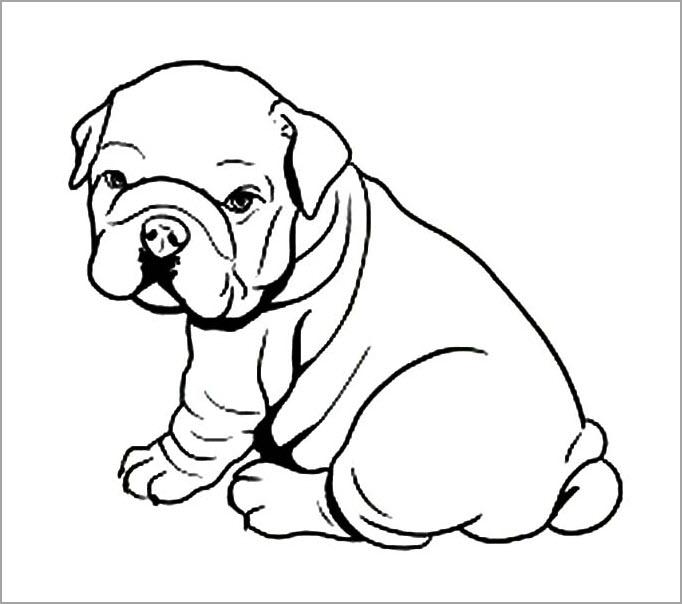 Tranh tập tô màu con chó