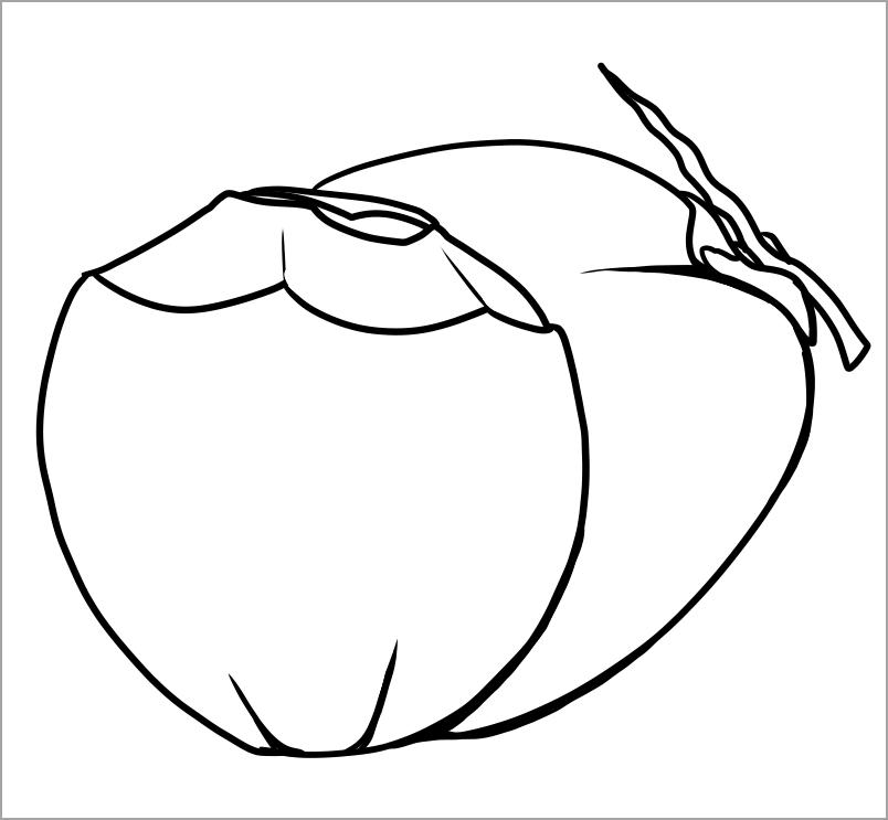 Tranh tô màu quả dừa