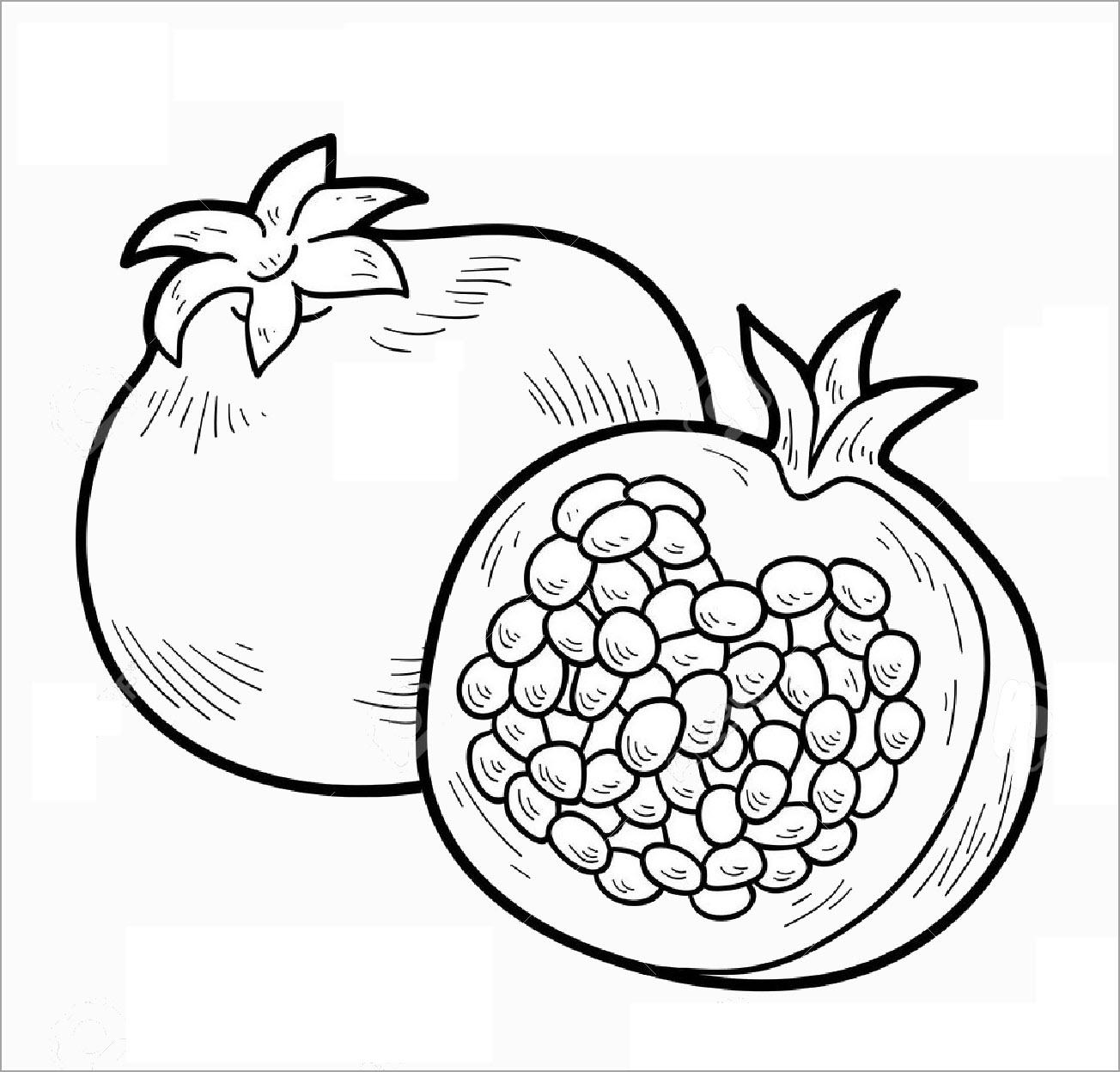 Tranh tô màu quả lựu