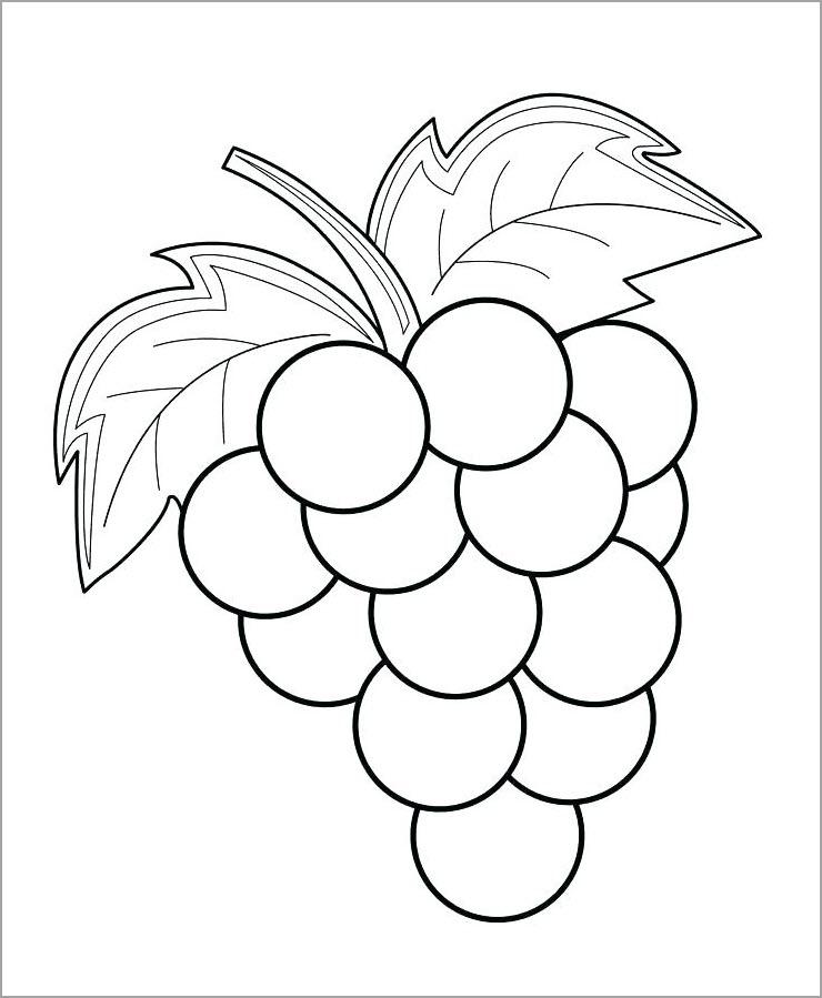 Tranh tô màu quả nho