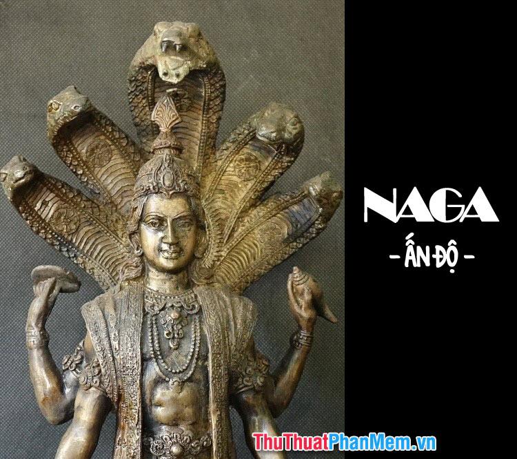 Thần rắn Naga trong truyền thuyết Ấn Độ