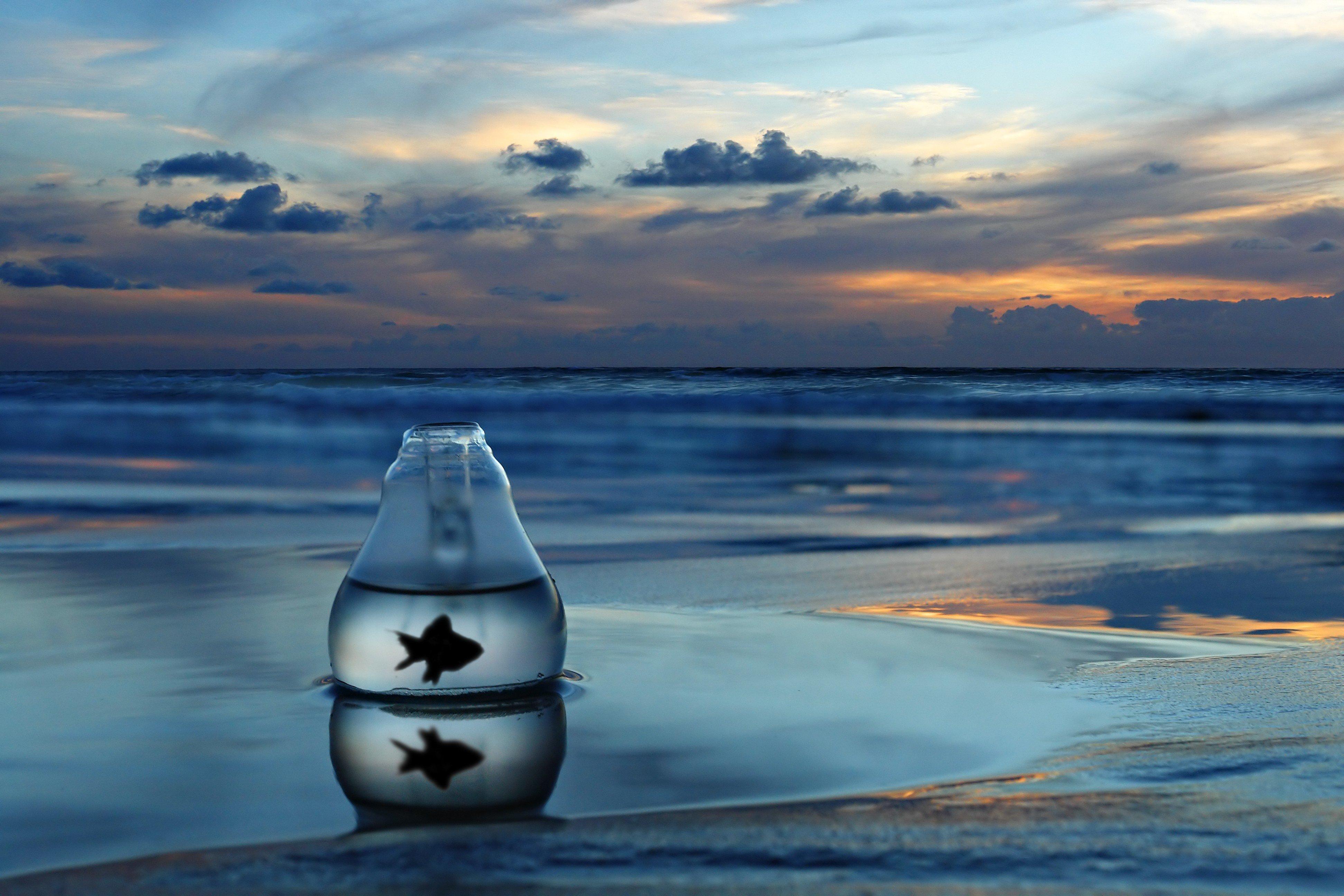 Ảnh đại dương cô đơn