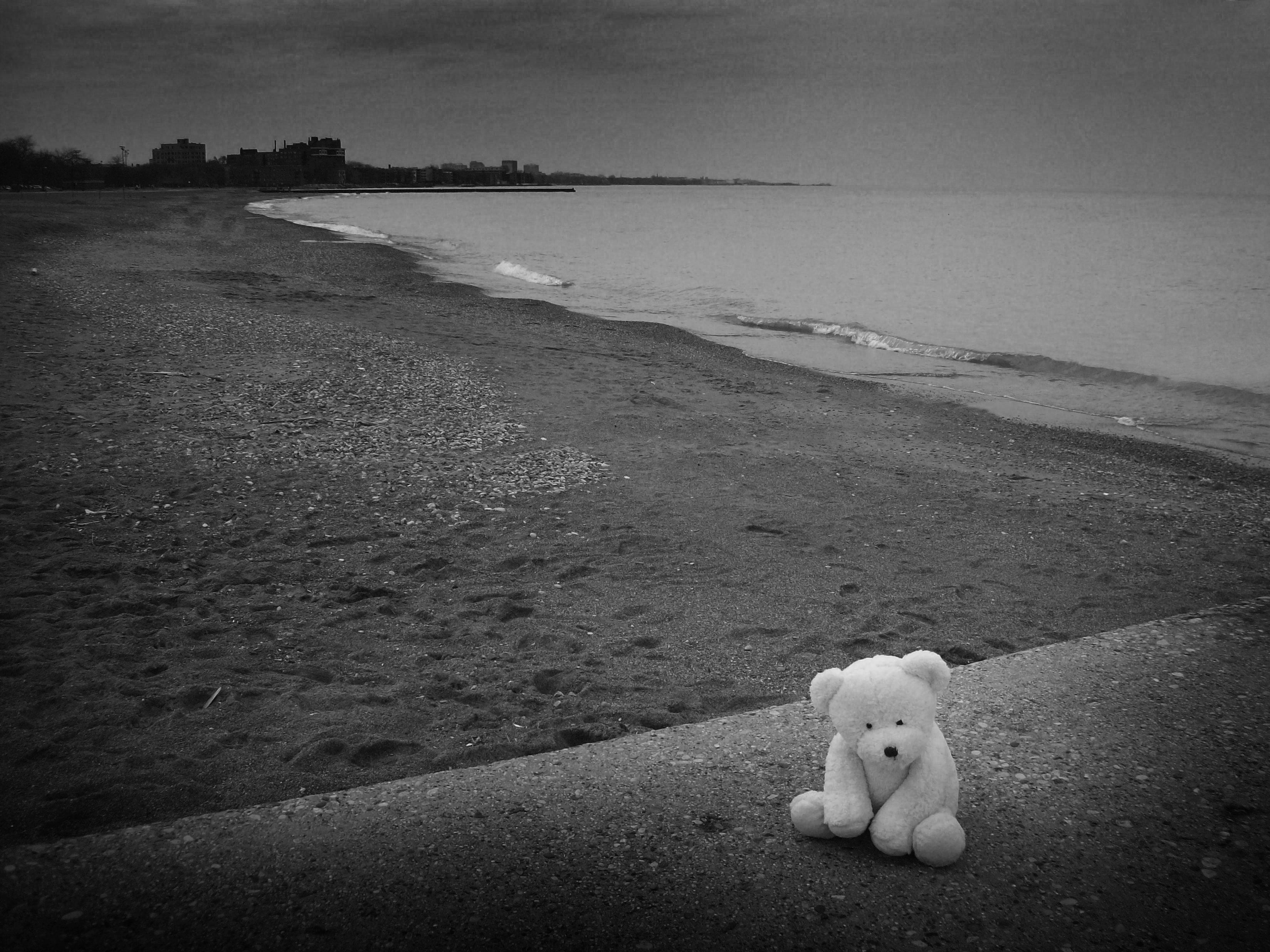 Gấu bông cô đơn