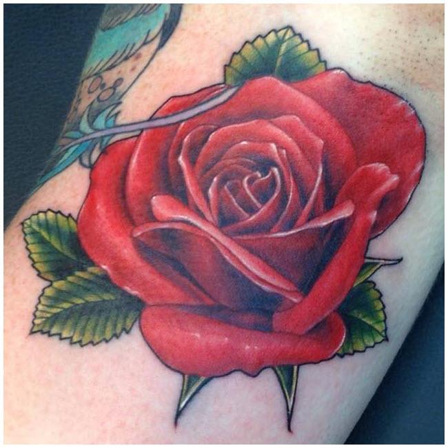 Hình xăm hoa hồng cực đẹp