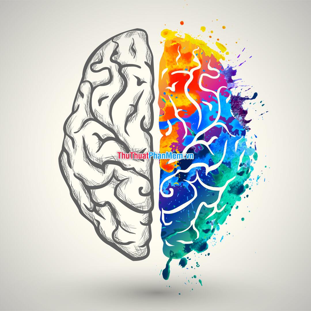 IQ được chia là hai dạng đó là IQ lỏng và IQ kết tinh
