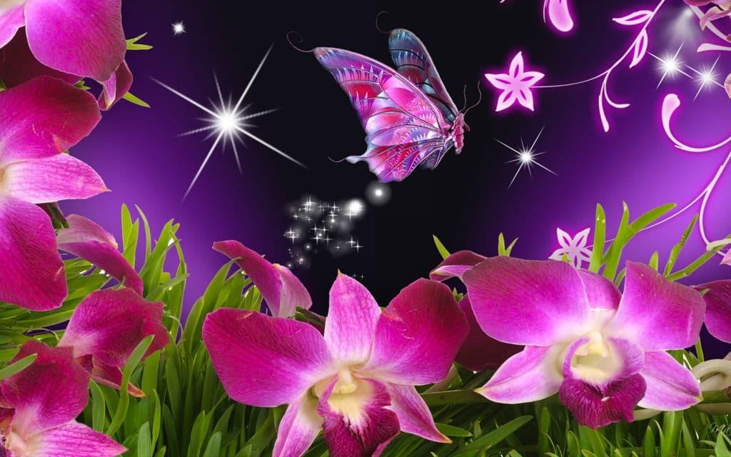 Hình ảnh bươm bướm màu hồng lạ mắt