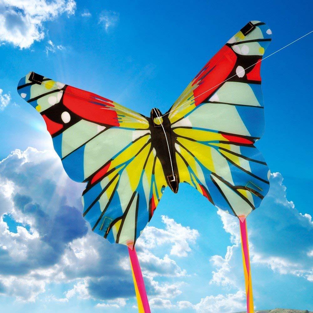 Hình ảnh bướm bướm trên những đóa hoa tươi thắm