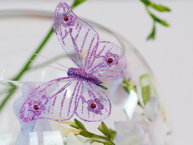 Hình nền con bướm xinh đẹp
