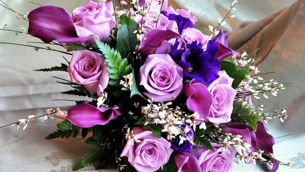 Hoa hồng màu tím thể hiện điều gì