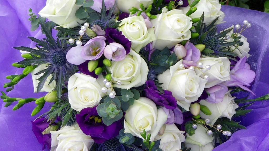 Hoa hồng tím giá rẻ nhất là bao nhiêu