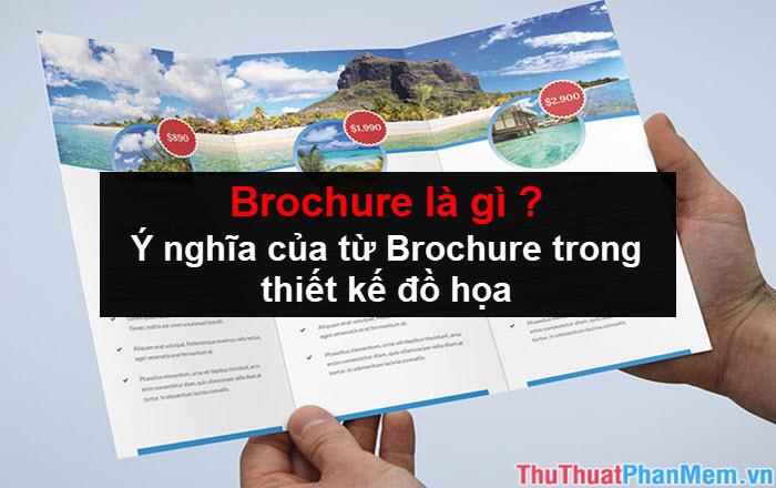 Brochure là gì? Ý nghĩa của từ Brochure trong thiết kế đồ họa